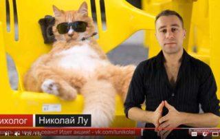 Скриншот с видео про тип личности Б