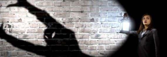 Девушка тень и чудовище