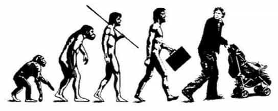 Человек и эволюционный цикл