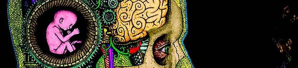 Ребенок в мозгу человека